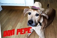 Don_Pépé