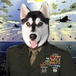 Major Lobo da Real