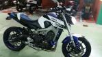 tiger98000