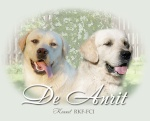 DeAnrit