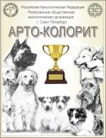 АРТО-КОЛОРИТ