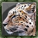Jaguar666