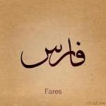 شؤون المغتربين العرب 10-51