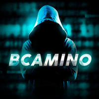 BCAMINO57