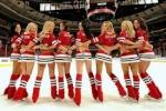 Forumactif.com : Ligue Hockey Quebec Simulé ! 3-88