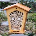 Bee.ber