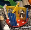 Coco in her cage which she shares with her 2 sisters playing with all her new stuff when we first got them