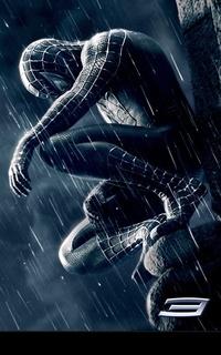 spiderblack