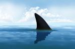 Forumactif.com : sharkland 1-24