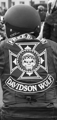DavidsonWolf