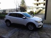 Opel Grandland X Club Italia: il Forum 45-11