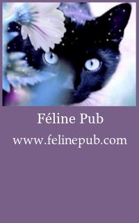 Féline Pub