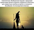 Магия ТАРО 241-55