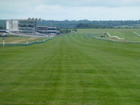 The Rowley Mile