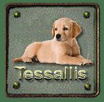 Tessallis