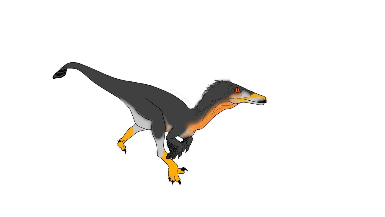 Coopers Hawk Austroraptor Skin