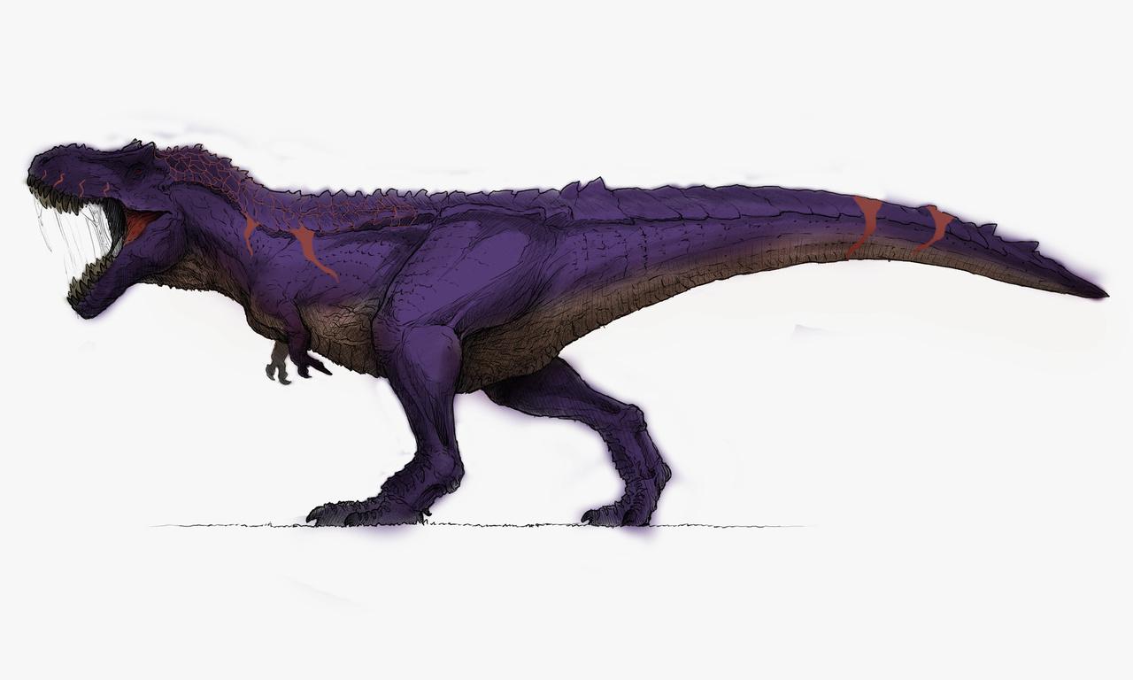 Omega Hyperendocrin Rex