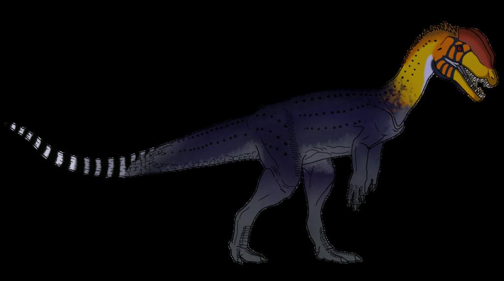 Hornbill Dilophosaurus Skin