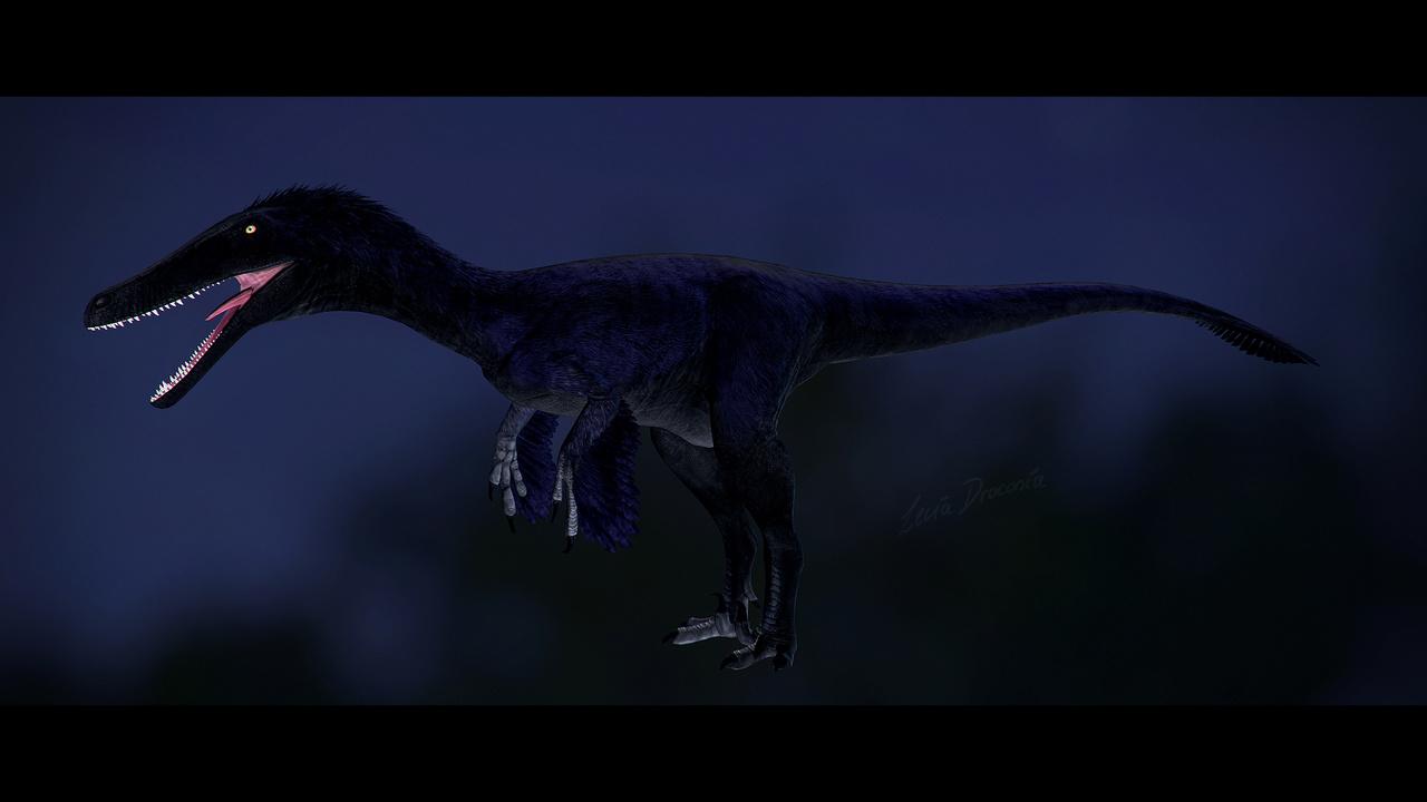 Nightshade Austroraptor