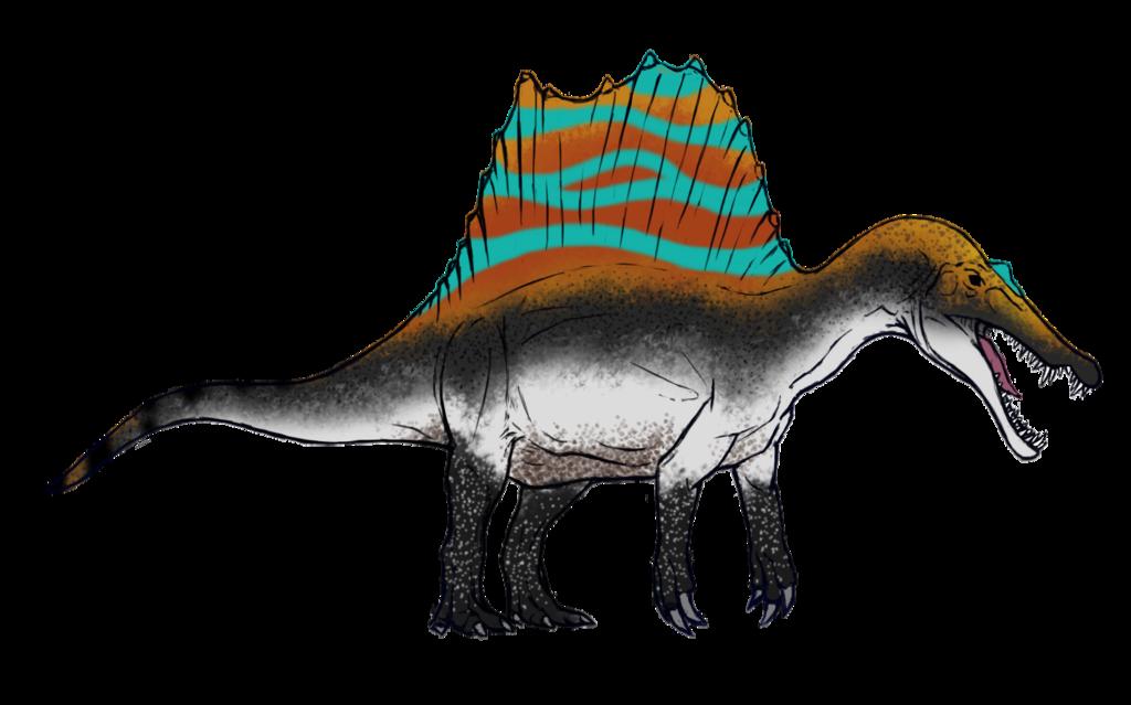 Peacock Spider Spinosaurus Skin