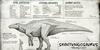 Official Shantungosaurus Dossier