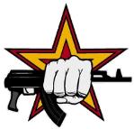 sturmovik1943