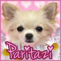 Paritazi