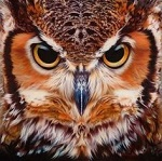 OwlsEye_PT