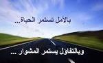 بيض محمد
