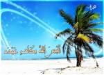 محمد الصاري