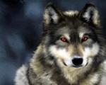 badwolf