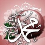 أبو البهاء
