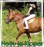 HellluHorse