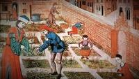 Les malheurs du jardinier 2-68