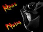 =L^T^B=Rose_Noire