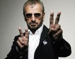 Stevie Ringo