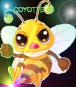 coyotte46