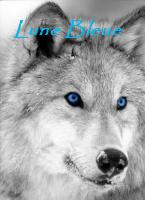 Rigu / Paws / Lune Bleue