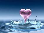 LionD'eau5