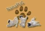 NanaPUG