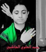 محمد العلوي الهاشمي