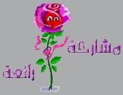 qazanya