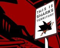 DG sharks