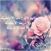 عبدالسلام محمد العربي