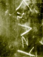krazy-luv