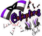 coléoptères01
