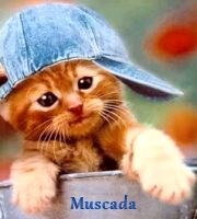 Muscada